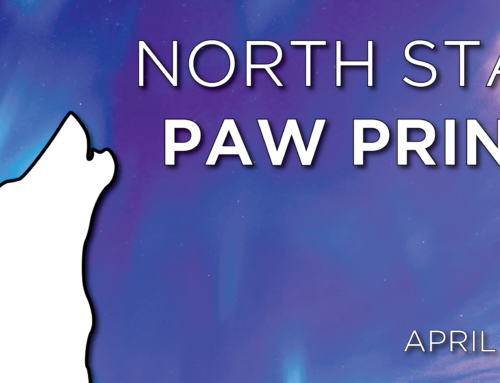 North Star Paw Print (April 2018)