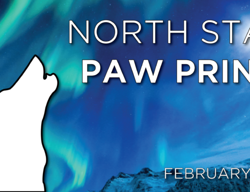 North Star Paw Print (February 2018)