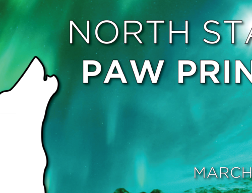 North Star Paw Print (March 2018)