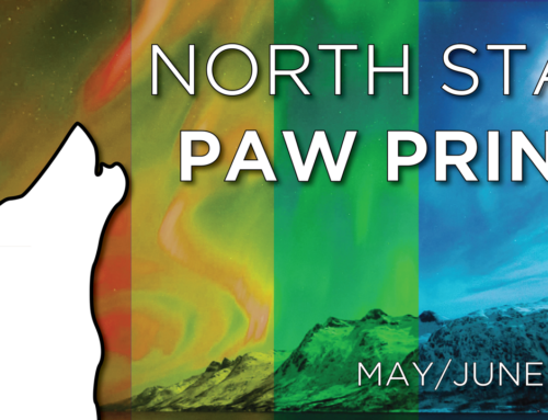North Star Paw Print (May/June 2018)