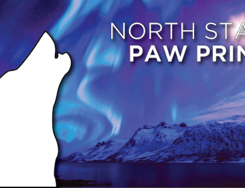 North Star Paw Print (April 2019)