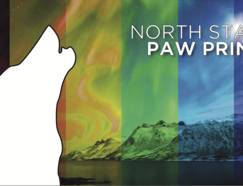North Star Paw Print (June 2019)